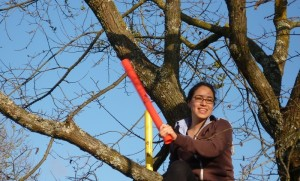 Photo of an adult sitting in a tree playing percussion with musical tubes