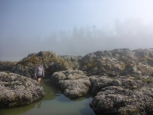 Photo: big rocks with tidepools, one person walking in the waterway, background: fog with silhouettes of trees.