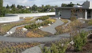 Photo of a roof top garden with paths and small plants